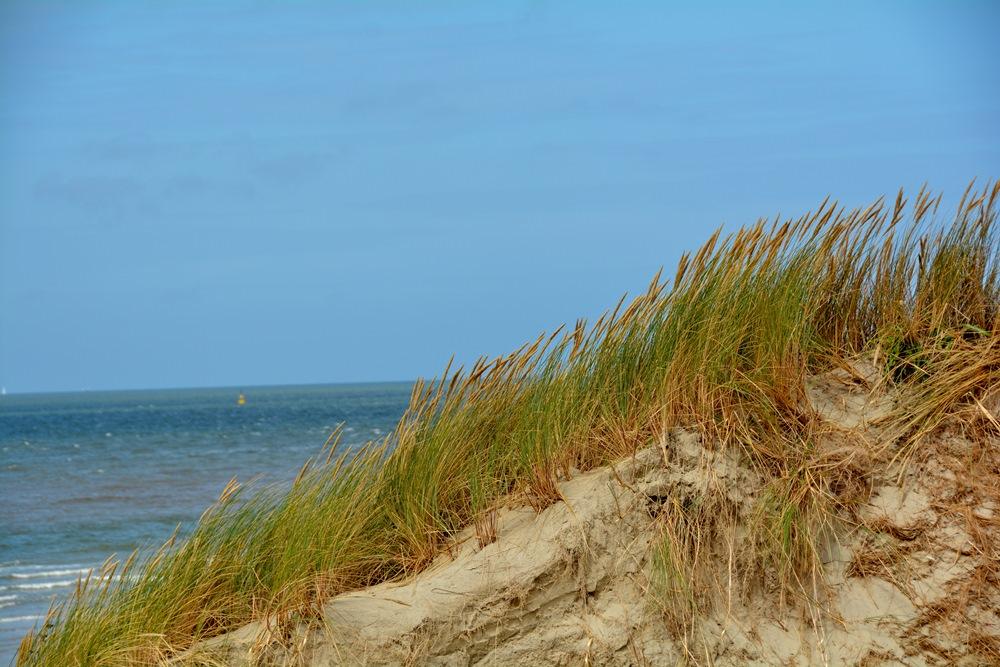 Ameland duinen en zee