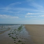 Ameland strand – Boerkerij Hollum Ameland natuur