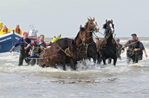 Paardenreddingboot met Theo - fotografie Dirk van Egmond